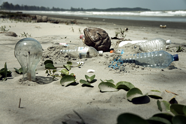 """Water Pollution with Trash Disposal of Waste at the Garbage Beach"" by Epsos"