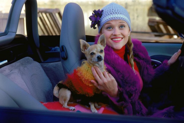 Screencap from Legally Blonde  courtesy of MGM