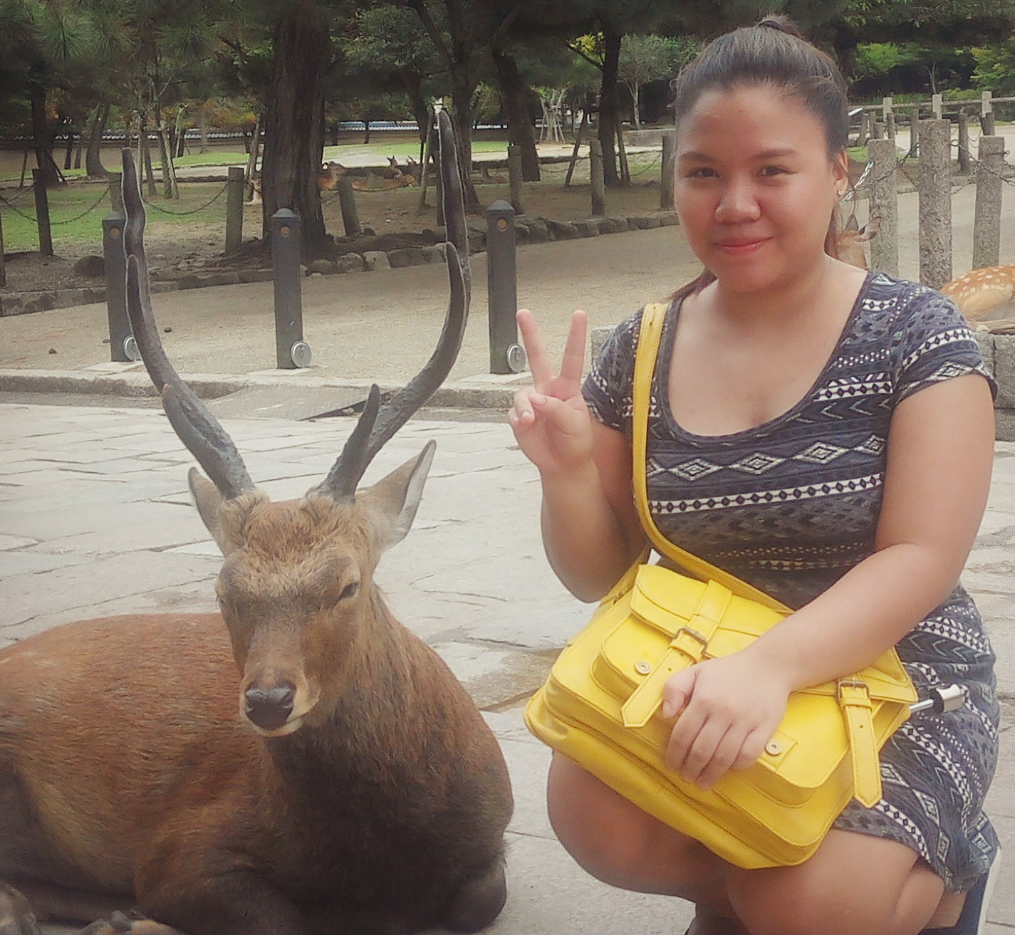 The author with a sleepy deer in Nara, Japan