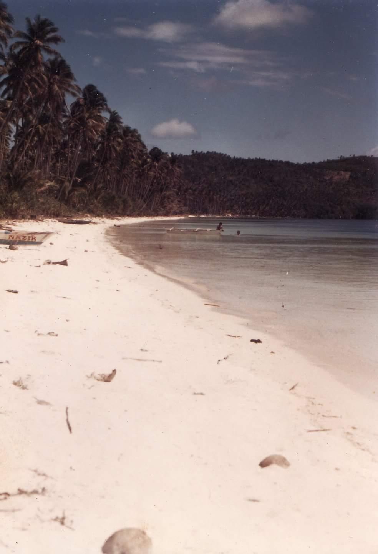 Western Visayas Island